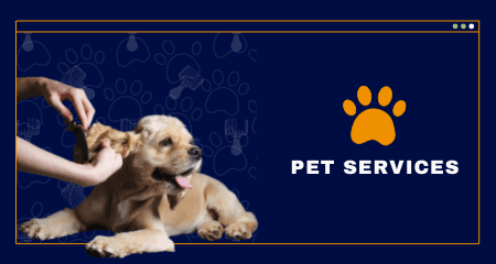 Pet services (Kinds of businesses that need Local SEO)
